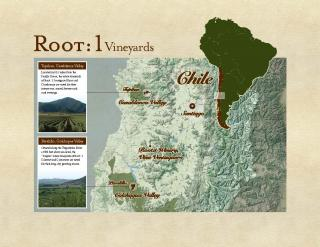 RT Vineyard Map