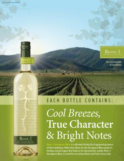Root:1 Cool Whites Sauv Blanc Header