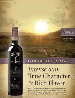 Root:1 Rich Reds Carmenere Header