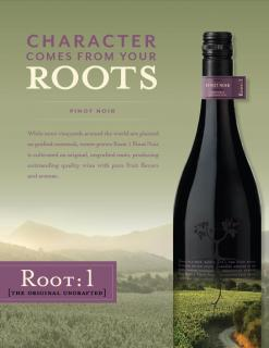 Root: 1 Pinot Noir Sell Sheet